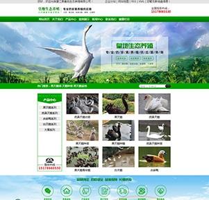 望江县皇地生态养殖有限公司